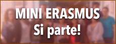 logo minierasmus per studenti lucani